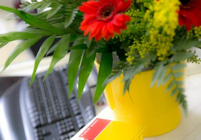 Kaltenbach GmbH Aussenwerbung - Büroansichten